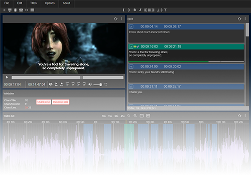 Screenshot of subtitle editor